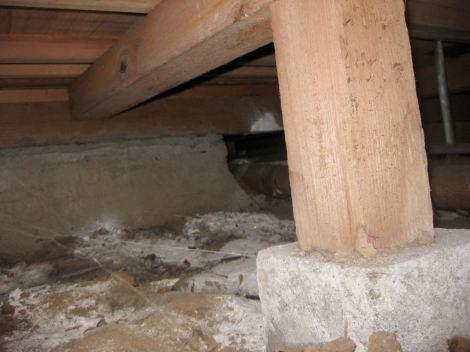 床下を覗き基礎開口を調査