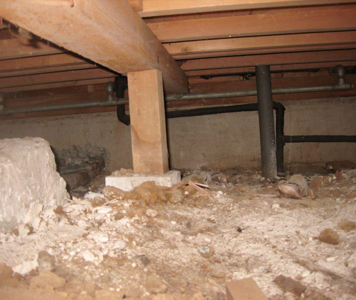 床下を覗き劣化を調査